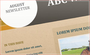 Email newsletters - email marketing templates